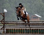 EMC Bahai and Nora Jumping in the Rain at the Florida Horse Park