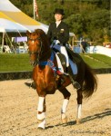 Bretone & Nora - Region 8 Grand Prix Freestyle Champions