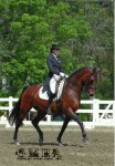 Farleight won all 3 of his I-1 classes at both GMHAs, with 69.868%, 71.447%, & 71.184%