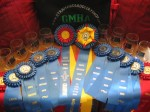 Lots of ribbons and trophies from GMHA June