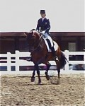 Farleight and Nora winning the Developing Horse at GMHA