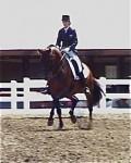 Farleight and Nora winning the Developing Horse at GMHA