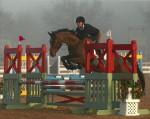 Jumping at HITS Ocala