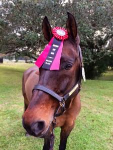 Farleight with Saturday's ribbon